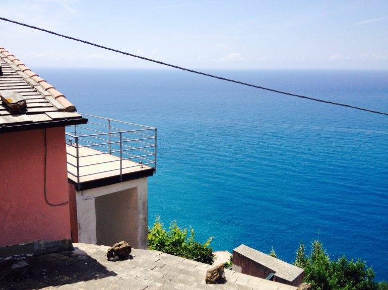 View from The Heart of Cinque Terre.