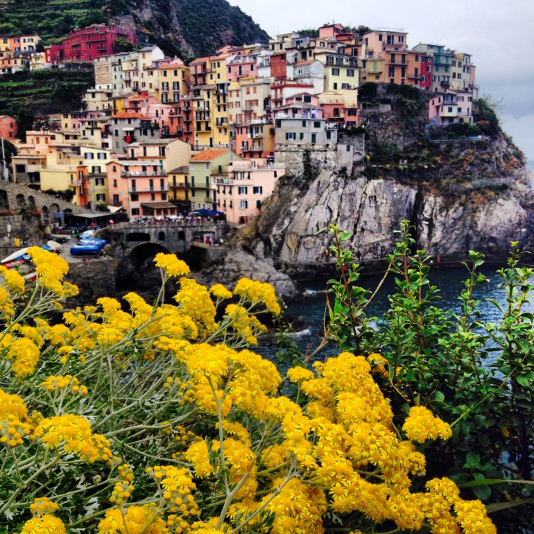 The beautiful Manarola