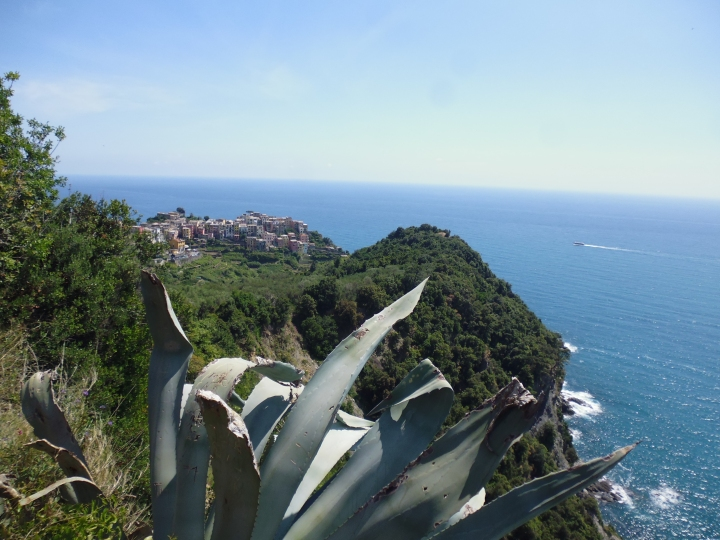 Looking down to Vernazza from Prevo