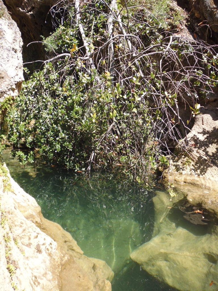 One of the beautiful fresh water terraces