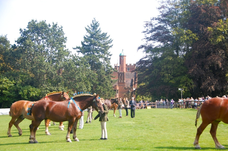 The Suffolk Horse Spectacular!