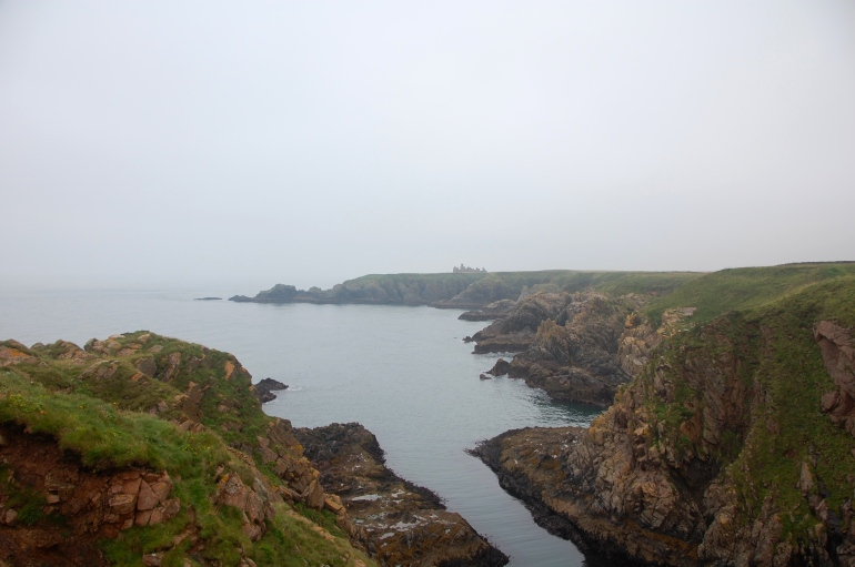 Sheer cliffs and quiet seas. Welcome to the Buchan Coast