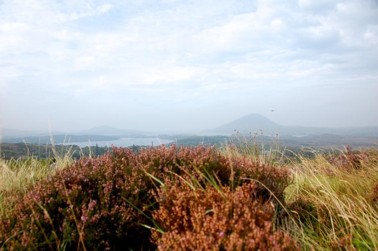 Views at the Connemara National Park.