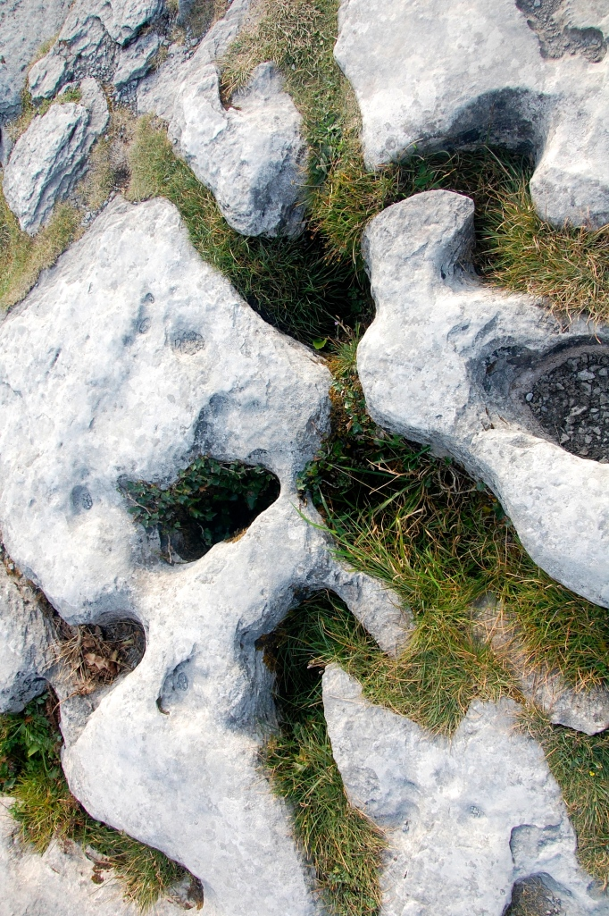 Unusual rock formations cover the ground in the Burren.