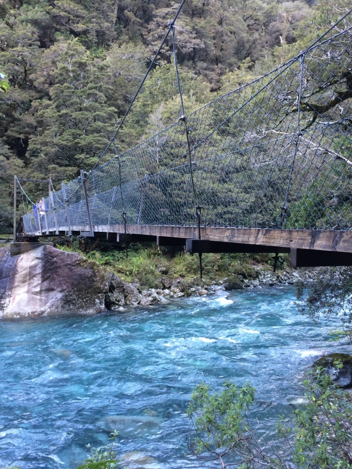 Our discovery on the Hollyford Track - made us feel a lot better after the embarrassing fuel debacle.